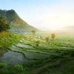 Top 10 Bali Travel Tips you must know before you go